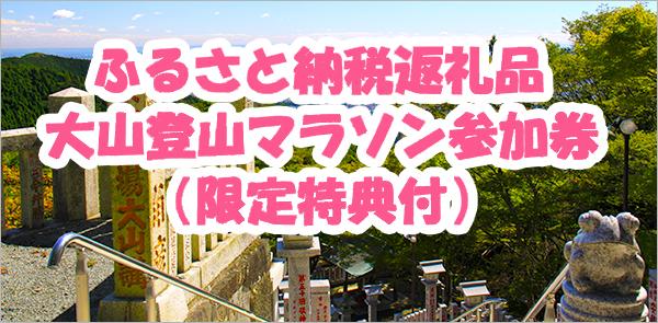 ふるさと納税申込 大会招待券+限定特典付!